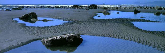 Tide Pools at Ruby Beach